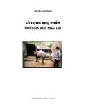 Sử dụng phụ phẩm nuôi gia súc nhai lại