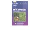 Ebook Bác sĩ cây trồng: Quyển 2