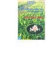 Công nghiệp mới trồng hoa-Cây hoa Lily