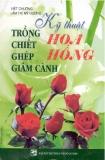 Kỹ thuật trồng chiết ghép giâm cành Hoa hồng