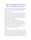 Chapter 031. Pharyngitis, Sinusitis, Otitis, and Other Upper Respiratory Tract Infections