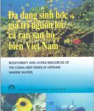 Cá rạn san hô biển Việt Nam giá trị nguồn lợi và đa dạng sinh học