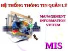 Hệ thống thông tin quản lý: MIS