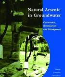 NATURAL ARSENIC IN GROUNDWATER: OCCURRENCE, REMEDIATION AND MANAGEMENT