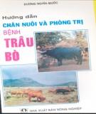 Phòng trị bệnh ở trâu bò và cách hướng dẫn chăn nuôi