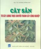 Chuyển đổi từ cây lương thực sang cây công nghiệp với nghề trông cây sắn