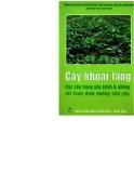 Cây khoai lang-Các con trùng gây bệnh và những rối loạn dinh dưỡng chủ yếu