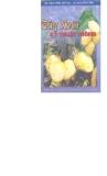 Cây xoài và kỹ thuật trồng