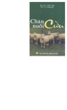 Kỹ thuật chăn nuôi Cừu