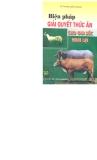 Biện pháp giải quyết thức ăn cho gia súc nhai lại