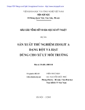 Báo cáo tổng hết khoa học: Sản xuất thử nghiệm Zeolit dạng bột và hạt dùng cho xử lý môi trường