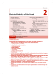 Chapter 2: Electrical Activity of the Heart