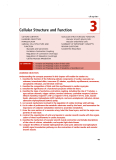 Chapter 3: Cellular Structure and Function