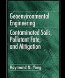 The Geoenvironmental Engineering: Contaminated Soils, Pollutant Fate, and Mitigation
