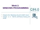 Week 2: WINDOWS PROGRAMMING