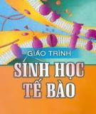 Di truyền tế bào (Nguyễn Như Hiền,  NXB Đại học quốc gia Hà Nội 2005)