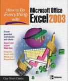 How To Do Everything with Microsoft Office  Excel 2003