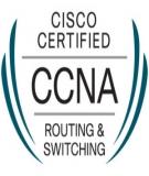 Giáo trình Hệ tính CCNA 4