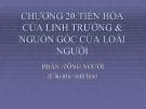 Chương 20 TIẾN HÓA CỦA LINH TRƯỞNG & NGUỒN GỐC CỦA LOÀI NGƯỜI - PHẦN :TÔNG NGƯỜI