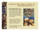 CHƯƠNG 9: PHÁT TRIỂN CỦA ĐỘNG VẬT THÂN MỀM (MOLLUSCA)