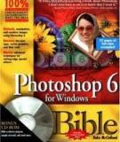 Photoshop 6 for Windows® Bible