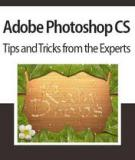 A dobe photoshop CS Tips and Tricks from the Experts