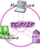 THÔNG ĐIỆP ĐIỀU KHIỂN VÀ BÁO LỖI CỦA TCP/IP