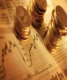 Phân tích tính hình đầu tư công và nợ công của Việt Nam trong giai đoạn năm 2007 - 2011