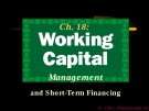 Financial Management - Chapter 18