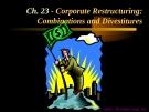Financial Management - Chapter 23