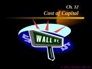 Financial Management - Chapter 12