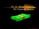 Financial Management - Chapter 14