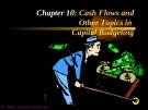 Financial Management - Chapter 10