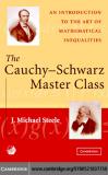 THE CAUCHY–SCHWARZ MASTER CLASS - J. Michael Steele