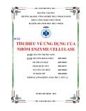 ĐỀ TÀI:  TÌM HIỂU VỀ ỨNG DỤNG CỦA NHÓM ENZYME CELLULASE