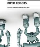 BIPED ROBOTS