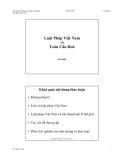 Luật Pháp Việt Nam và Toàn Cầu Hoá
