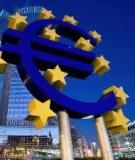 Đồng Euro độ và tác động của nó đến nền kinh tế thế giới và Việt Nam