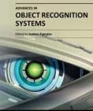 ADVANCES IN OBJECT  RECOGNITION SYSTEMS