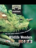 Britannica Discovery Library: Wildlife Wonders