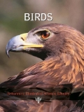 BIRDS (Britannica Illustrated Science Library)