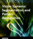 Vision Systems Segmentation and Pattern Recognition