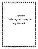 Luận văn: Chiến lược marketing của Công ty Vinamilk