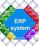 Hệ thống Hoạch định Nguồn lực Doanh nghiệp (ERP)