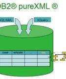 Xây dựng một ứng dụng pureXML và JSON
