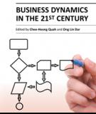 Business Dynamics in the 21st Century