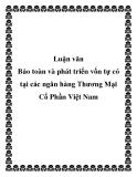 Luận văn: Bảo toàn và phát triển vốn tự có tại các ngân hàng Thương Mại Cổ Phần Việt Nam