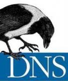 DNS làm việc như thế nào