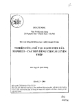 Báo cáo: Nghiên cứu, chế tạo gạch chịu lửa Manhzêzi cac bon dùng cho lò luyện  thép