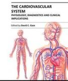 THE CARDIOVASCULAR  SYSTEM – PHYSIOLOGY,  DIAGNOSTICS AND  CLINICAL IMPLICATIONS